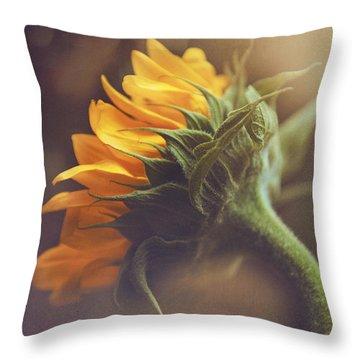 Morning Sunlight Throw Pillow by Iris Greenwell