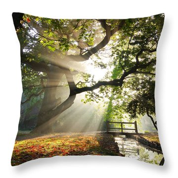 Morning Sunrise In Hampden Park Throw Pillow