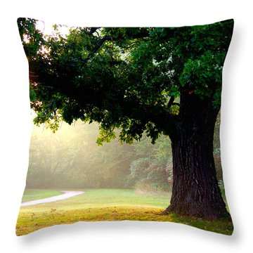 Morning Sunrise Throw Pillow by Linda Mishler