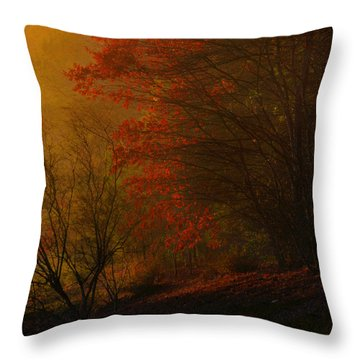 Morning Sunrise With Fog Touching The Tree Tops In Georgia. Throw Pillow