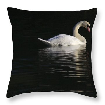 Morning Swan Throw Pillow