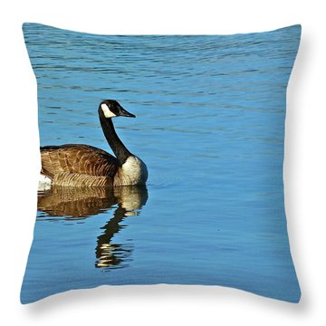 Morning Swim Throw Pillow