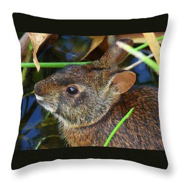 Throw Pillow featuring the photograph Morning Swim by Sally Sperry