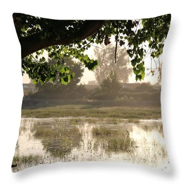 Throw Pillow featuring the photograph Morning Tranquility  by Christy Pooschke