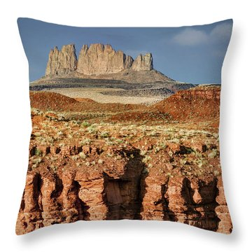 Throw Pillow featuring the photograph Morning View by Nikolyn McDonald