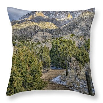 Throw Pillow featuring the photograph Morning Walk by Alan Toepfer