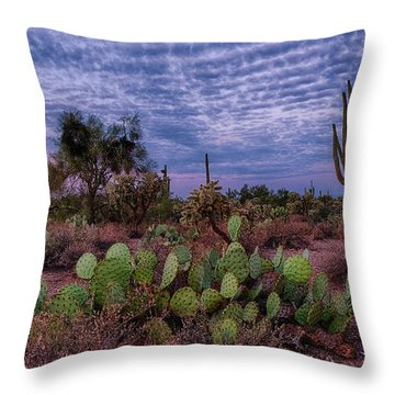 Morning Walk Along Peralta Trail Throw Pillow by Monte Stevens