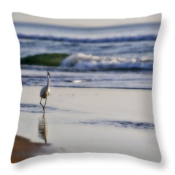 Morning Walk At Ormond Beach Throw Pillow by Steven Sparks