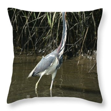 Morning Walk In The Water Throw Pillow