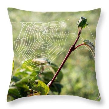 Morning Web #1 Throw Pillow