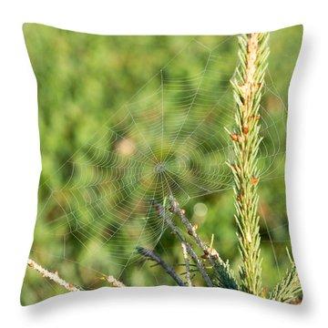 Morning Web #2 Throw Pillow