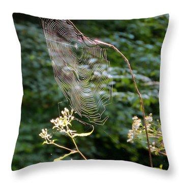 Morning Web Throw Pillow