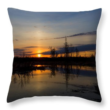 Morning Wilderness Throw Pillow