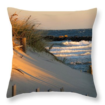 Morning's Light Throw Pillow by Dianne Cowen
