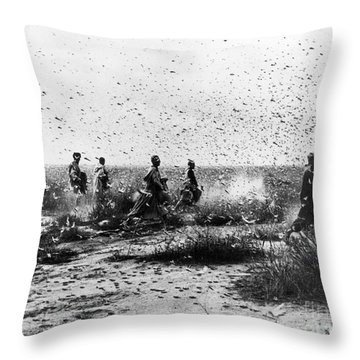 Morocco: Locusts, 1954 Throw Pillow by Granger