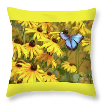 Morpho Butterfly Throw Pillow