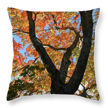 Mosaic Autumn Throw Pillow