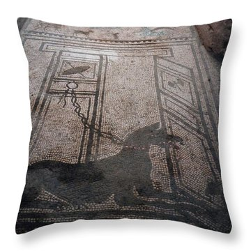 Mosaic In Pompeii Throw Pillow by Marna Edwards Flavell