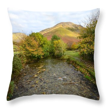 Beck Throw Pillows