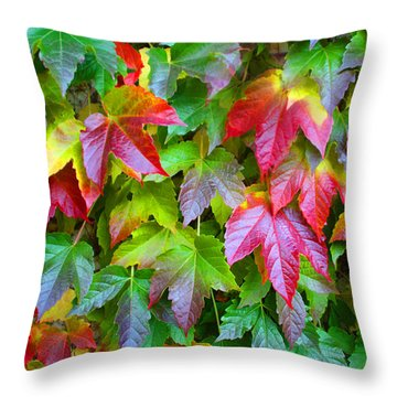 Moselle Valley Leaves Throw Pillow