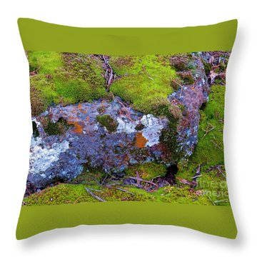 Throw Pillow featuring the photograph Moss And Lichen by Michele Penner