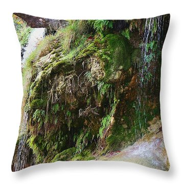 Throw Pillow featuring the photograph Moss And Waterfalls by Sheila Brown
