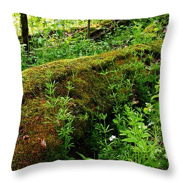Moss Covered Log 2 Throw Pillow