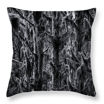 Moss Covered Trees Black And White Throw Pillow