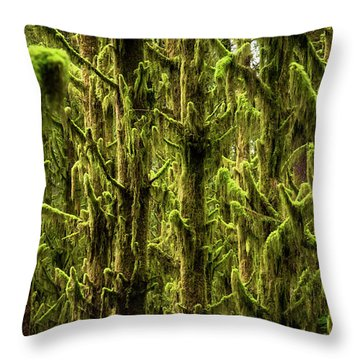Moss Covered Trees Throw Pillow