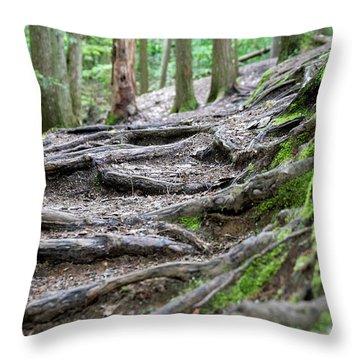 Moss Glen Falls - Vermont Throw Pillow