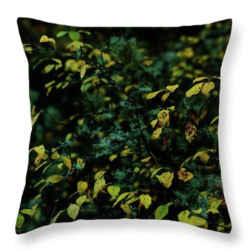 Moss In Colors Throw Pillow