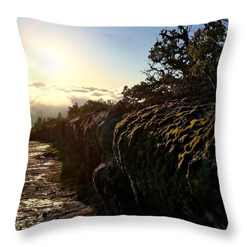 Moss Landing Throw Pillow by Paul Foutz