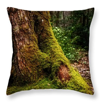 Throw Pillow featuring the photograph Moss On A Tree by Greg Mimbs
