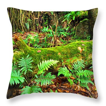 Moss On Fallen Tree And Ferns Throw Pillow by Thomas R Fletcher