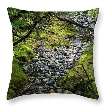 Moss Stream Throw Pillow