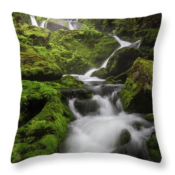 Mossy Fall #3 Throw Pillow