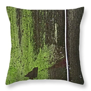 Throw Pillow featuring the photograph Mossy Fence 2 by Mary Bedy