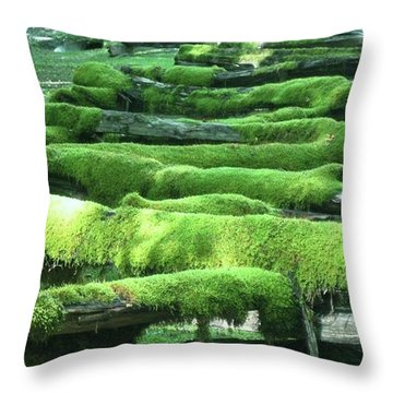 Mossy Fence Throw Pillow