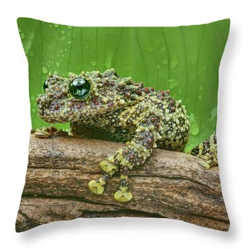 Throw Pillow featuring the photograph Mossy Frog by Nikolyn McDonald