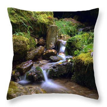 Mossy Glenn Spring 2 Throw Pillow by Bonfire Photography