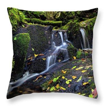 Emerald Cascades Throw Pillow