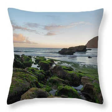 Mossy Rocks At The Beach Throw Pillow