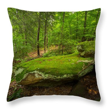 Mossy Rocks In Little Creek Park Throw Pillow