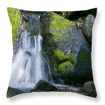 Mossy Rocks Stream Throw Pillow