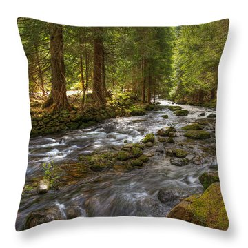 Mossy Stream Throw Pillow