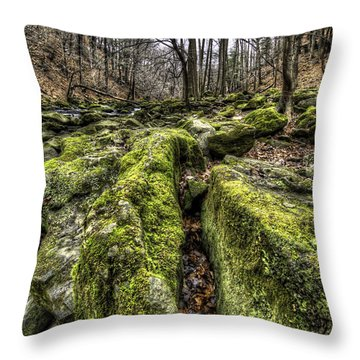 Mossy Trail Throw Pillow