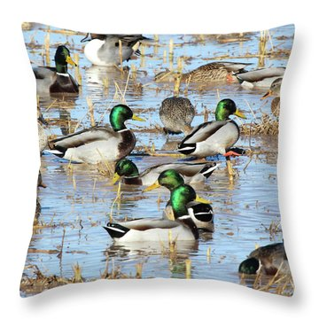 Mostly Mallards Throw Pillow