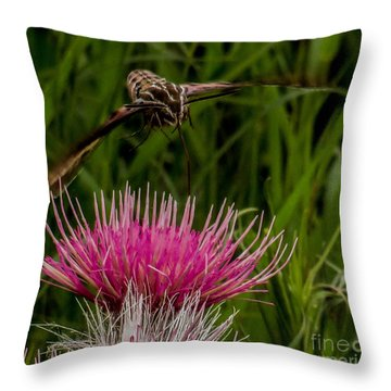 Moth 1 Throw Pillow