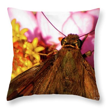 Moth On Pink And Yellow Flowers Throw Pillow