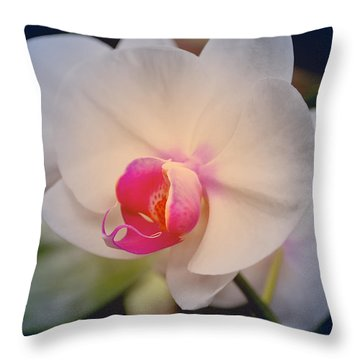 Throw Pillow featuring the photograph Moth Orchid 1 by Kate Word